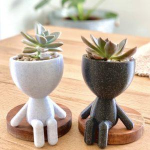 Vaso de Plantas _ 3D Cults